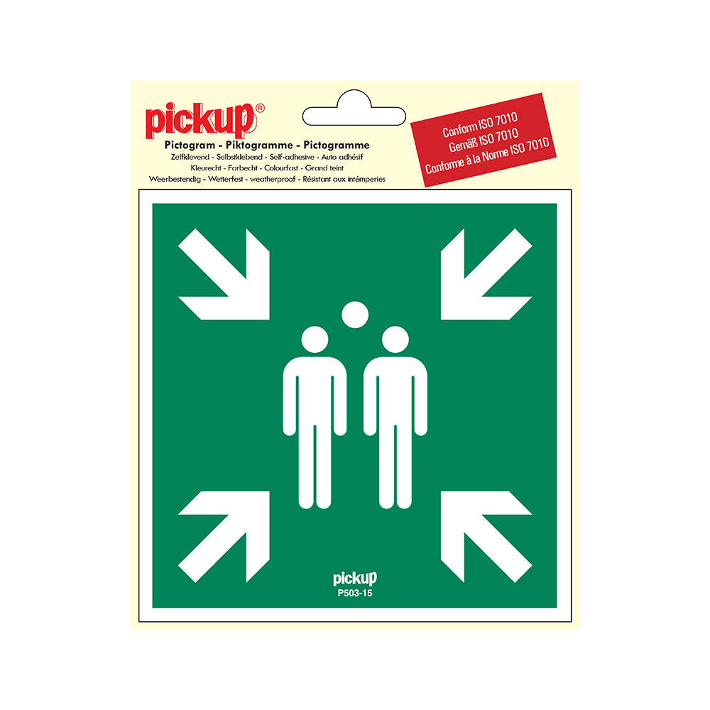 Pickup Pictogram 15x15 cm - Verzamelplaats bij calamiteit - conform ISO 7010