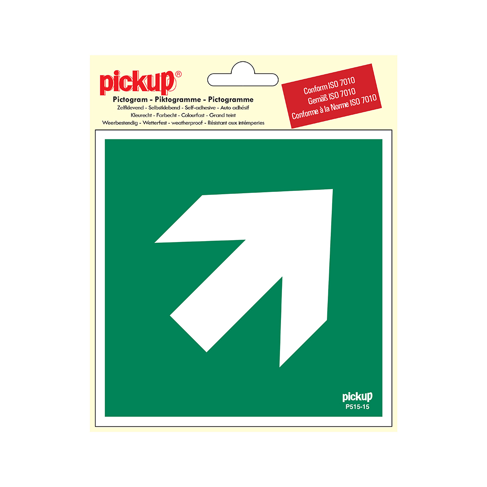 Pickup Pictogram 15x15 cm - Richtingspijl 45 - conform ISO 7010