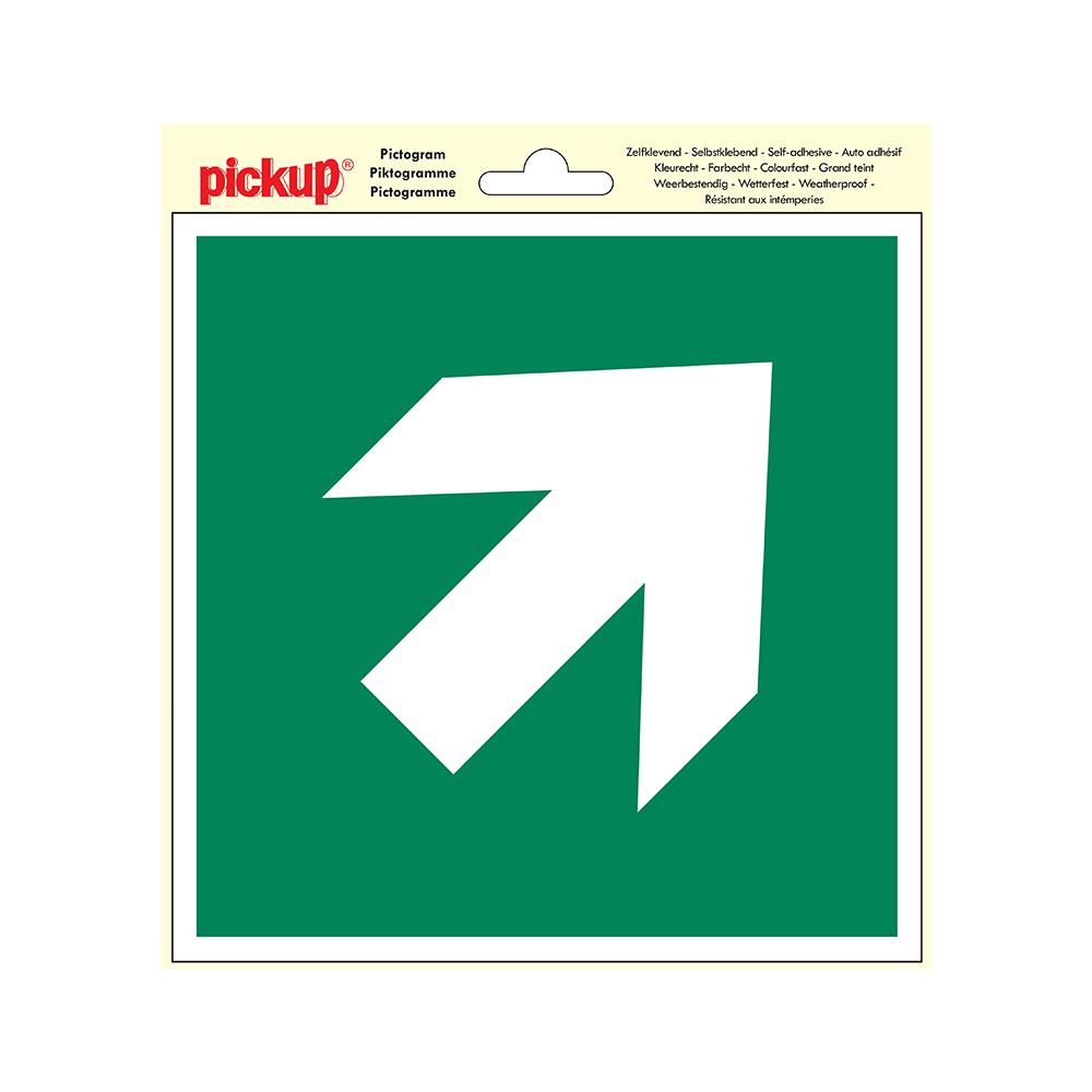 Pictogram 20x20cm - Vluchtweg pijl schuin